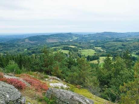 Randonnée - Entre Vedrenne et la Brette