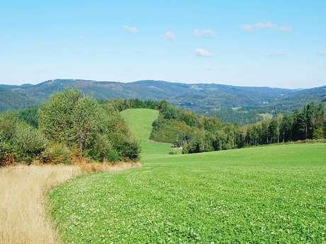 Randonnée - Le Puy Bezin