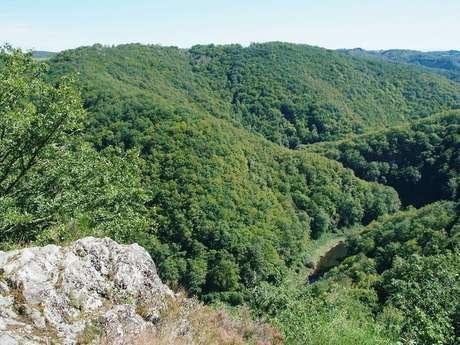 Randonnée - Le Site de Lestrange