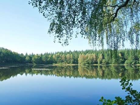 Randonnée - Les étangs du Doustre
