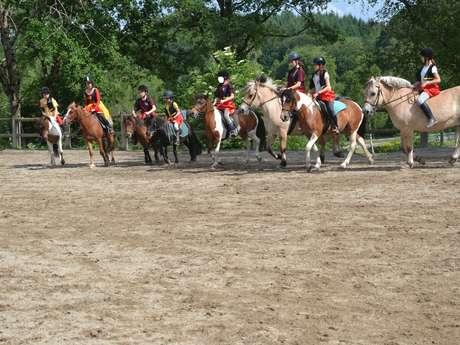 Concours d'équitation (dressage+saut d'obstacles)