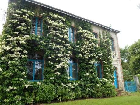 Chambres d'hôtes - L'Ecole buissonnière - Chambre mauve