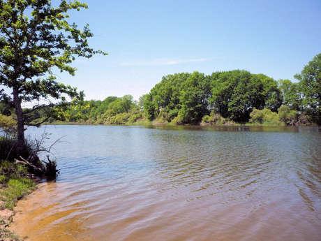 Circuit de randonnée:  Haute Serre et l'étang de Pinaud