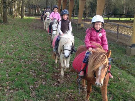 Promenades en poney