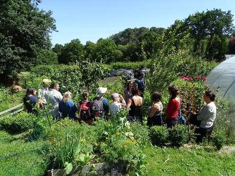 Atelier jardin: Jardin forêt