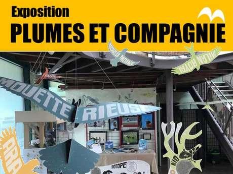 "Exposition ""Plumes et compagnie"""