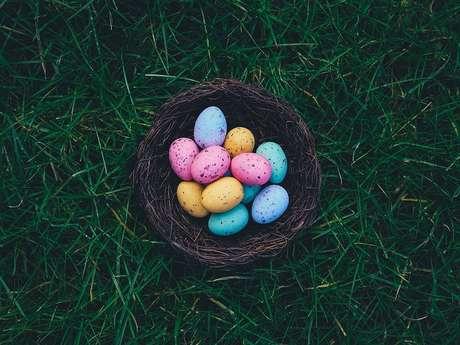 Cocorico, des œufs colorés cachés dans le jardin
