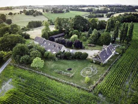 Chambre d'hôtes Le Bel Forest - Haut Briauche