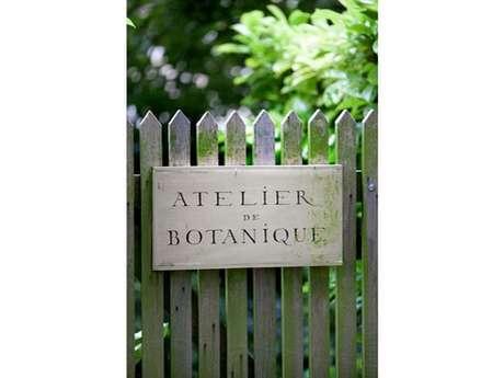 Atelier de peinture botanique (aquarelle)