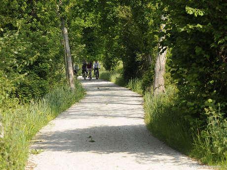 A vélo à Boissy-Maugis autour de la Véloscénie - Dites-le avec des fleurs