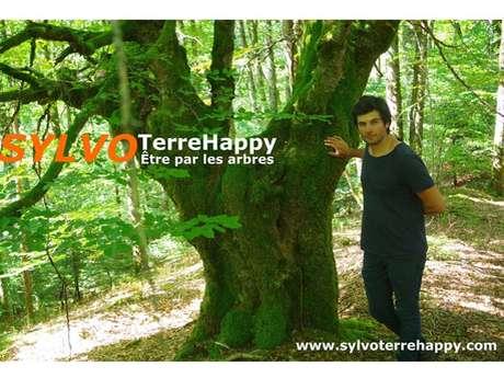 Sylvothérapie en forêt de Bellême