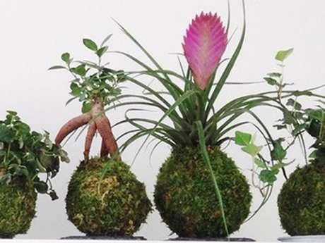 Stage d'art végétal