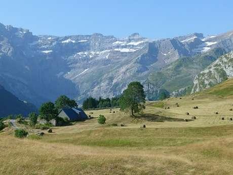 """Sortie Natura 2000 """"À la découverte de la flore de nos montagnes sur le plateau de Saugué"""""""