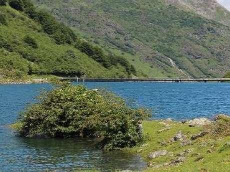Conférence : Historique de l'empoissonnement des lacs de montagne