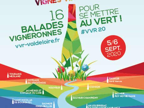 5 septembre - Vignes Vins Rando