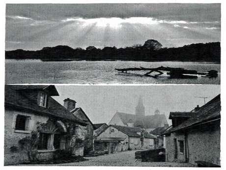 Exposition d'Alain MARTIN au Village Fromager Graindorge à Livarot
