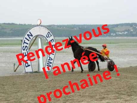 Courses hippiques - ANNULE