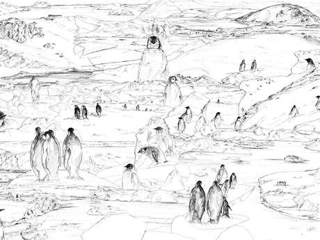 """REPORTE - Exposition de Liz Hascoët - Dessins - Galerie """"La Corne au Fer"""""""