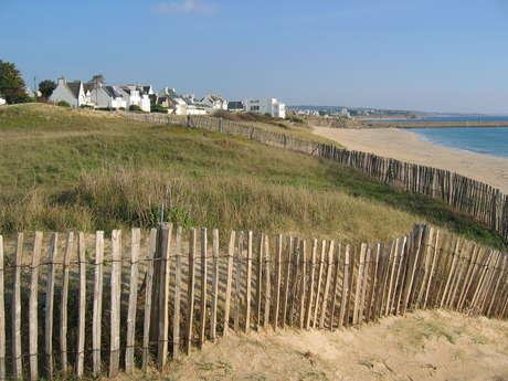 Découverte de la plage et de la dune de Trescadec