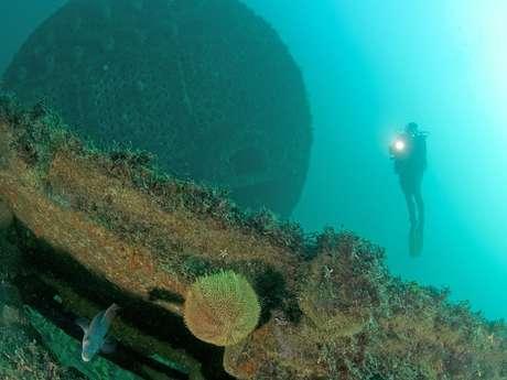 Les Plongeurs du Cap