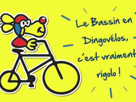 Dingo vélos