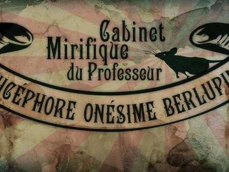Le Cabinet Mirifique du Pr Berlupin