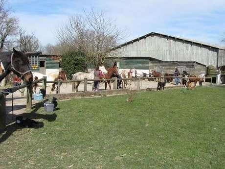 Centre équestre et poney club ferme équestre de Tréglodé