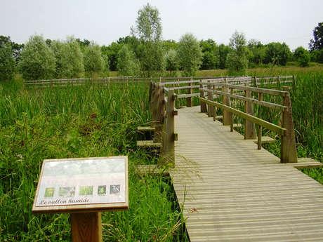 Parc de l'An 2000