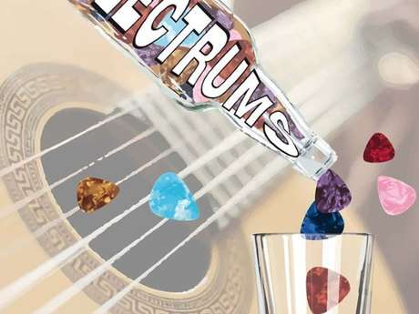 Concert: The Plectrums