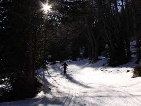 Ski nordique à Mijanès-Donezan