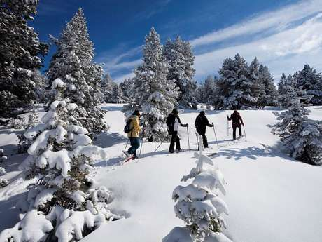 Snowshoeing at the Nordic Area of Beille