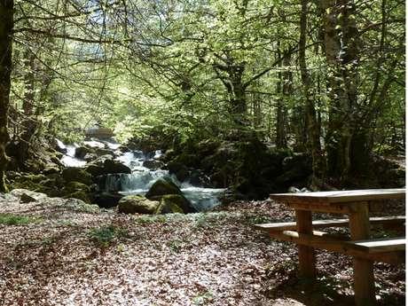 Aires de pique-nique des Pyrénées Ariégeoises