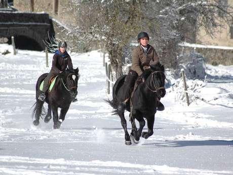 L'Ecrin des Cimes - Horse riding