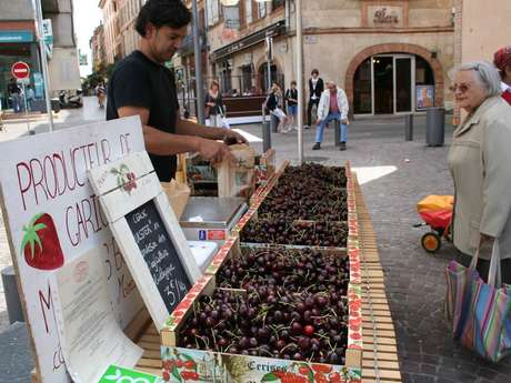 Mercado de productores orgánicos