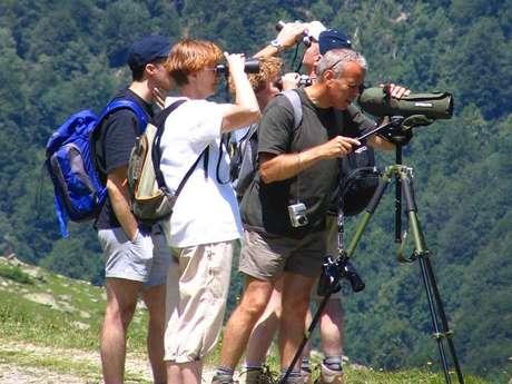 Accompagnateurs en montagne avec L'Observatoire de la Montagne