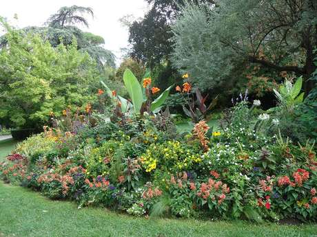 "Garden ""Jardin des Plantes"""