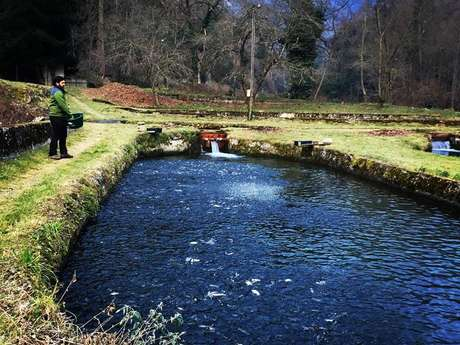 Poulat fish farming - GAEC of Les Chutes d'Aston