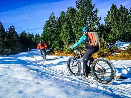Le Petit Plateau - Bicicleta Eléctrica