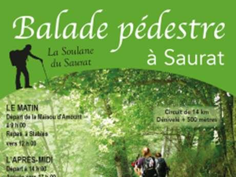 Randonnée sur la Soulane en Vallée du Saurat