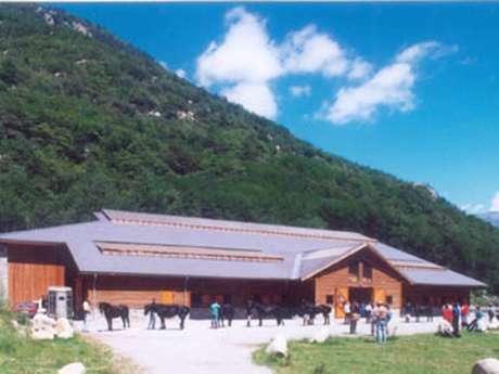 Programme Centre Equestre du Moncalm