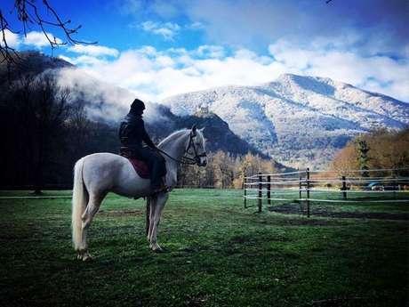 LES LONGUES PISTES - horsing centre