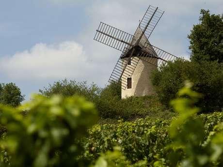 Visite guidée du Moulin Sorine