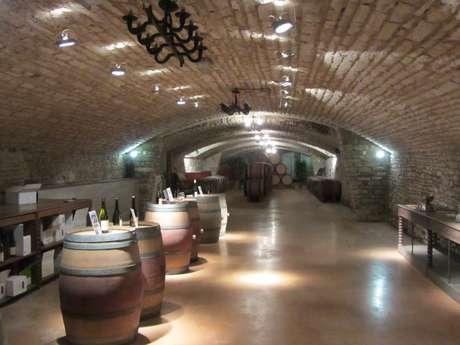 Vins Paul Michel