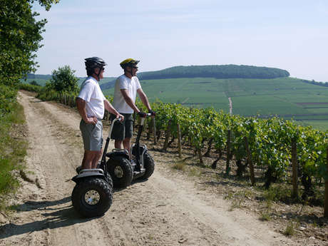 New Motion (Mobilboard Beaune-Dijon)