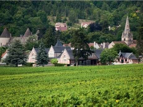 Visite Dégustation & Mâchon Domaine Henri de Villamont