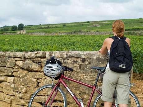 Agence de Tourisme de Santenay - Location de vélos