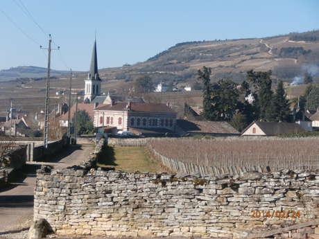 Domaine EARL Bourgogne Moniot