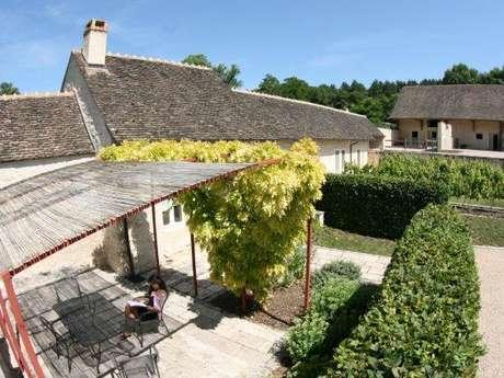 Domaine de Baptault - Les Vignes - Nelly CHEVRIER