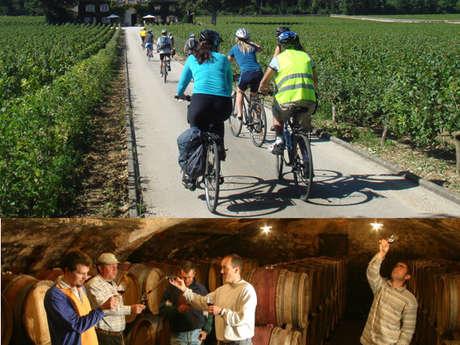 Week-end vélo et vins dans les grands crus