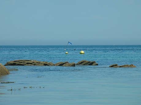 L'île en bandoulière - Sandrine DESMAREST